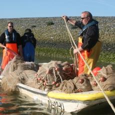 VMR Onderzoek - Zegenvisserij 4