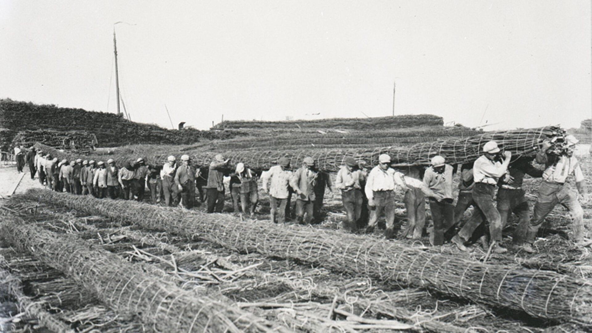 Oude foto van het werk aan de Afsluitdijk. Links zie je rollen met riet liggen. Daarnaast zijn mannen die de rollen naar de Afsluitdijk dragen.