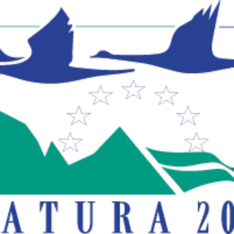 Logo Natura 2000. We zien een witte achtergrond met een blauwgroen blok erin. In het blok vliegen twee blauwe ganzen. Daaronder een getekend landschap en sterren. Daar weer onder de blauwe tekst: Natura 2000.