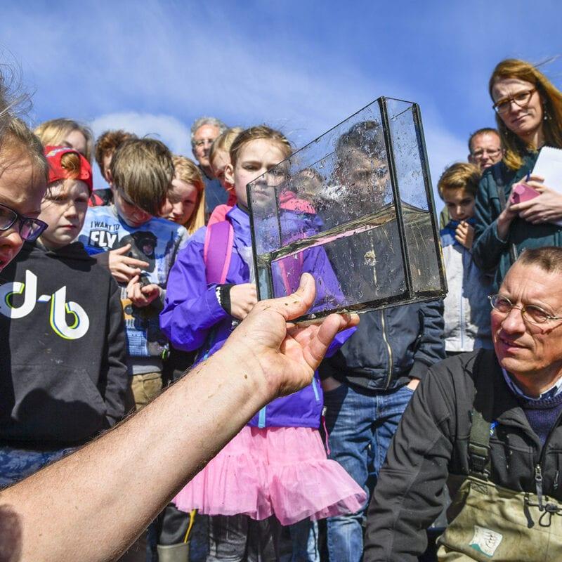Op de foto zie je een schoolklas die opzoek is naar de blije vis. Een volwassenen, je ziet alleen de arm, houdt een doorzichtig bakje met een vis omhoog. De kinderen kijken geïnteresseerd.