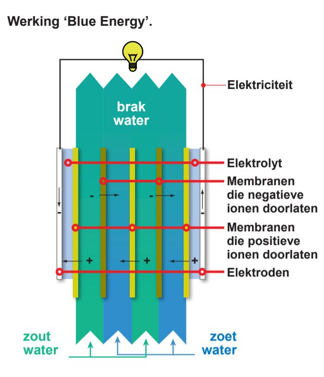Omschrijving van de werking van Blue Energy. Dit is een visuele weergave van een aantal balken met kartelvlakken. Bovenaan wordt energie (lampje) opgewekt. Een lijn gaat van het lampje naar beneden. Helemaal onderin zie je zout en zoet water van beide kanten het systeem in lopen. Tussen het lampje en het water zit een systeem van lijnen en membranen. Dit zie je door verschillende kleuren. Aan de zijkant staan van boven naar onder de woorden: elektrolyt, membranen die negatieve ionen doorlaten, membranen die positieve ionen doorlaten en elektroden.