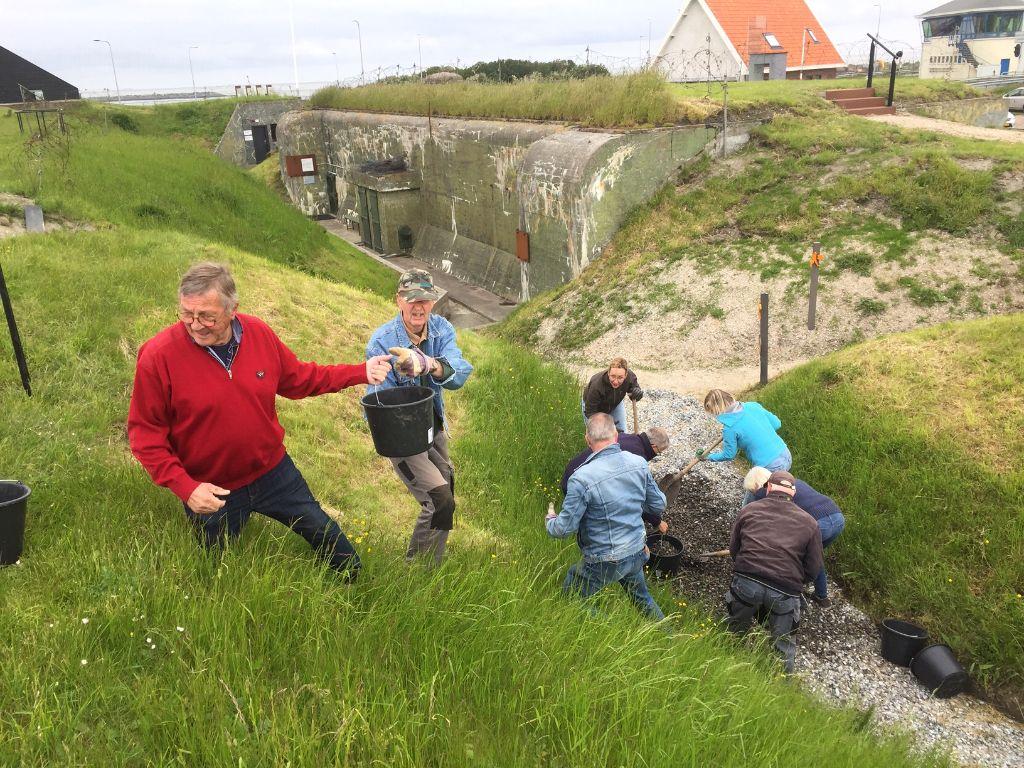 vrijwilligers van het museum die een pad aanleggen met schelpen
